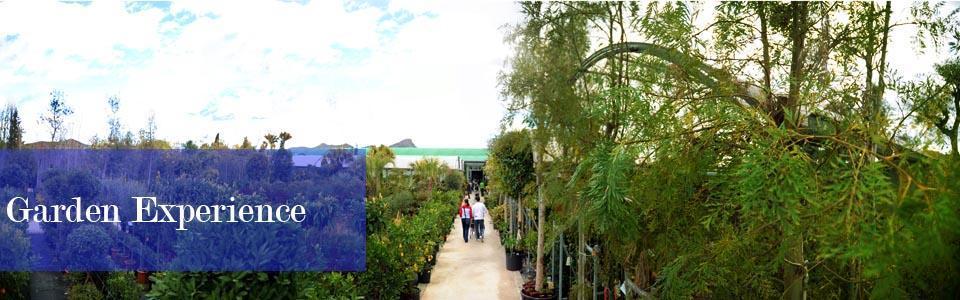 Garden Experience