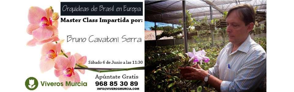 Master Class �Orqu�deas de Brasil en Europa�
