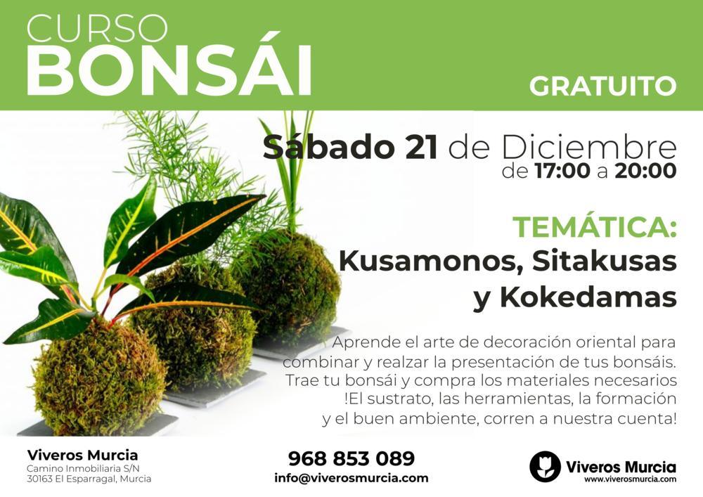 Taller especial de Bonsái: Kokedama, Sitakusas y Kusamonos gratis el próximo Sábado 21 de Diciembre